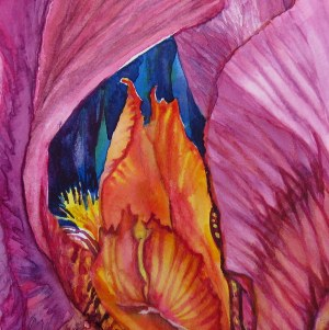 Iris Flame – Image © Susan Bartel. All Rights Reserved.